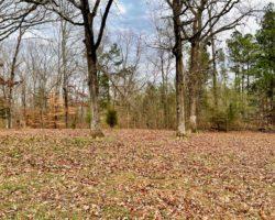 Lexington Tennessee Home Auction (28)