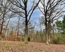 Lexington Tennessee Home Auction (30)
